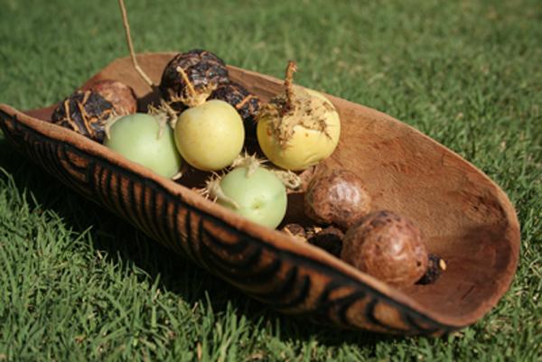 Australian bush spices at varona fine foods for Aboriginal cuisine